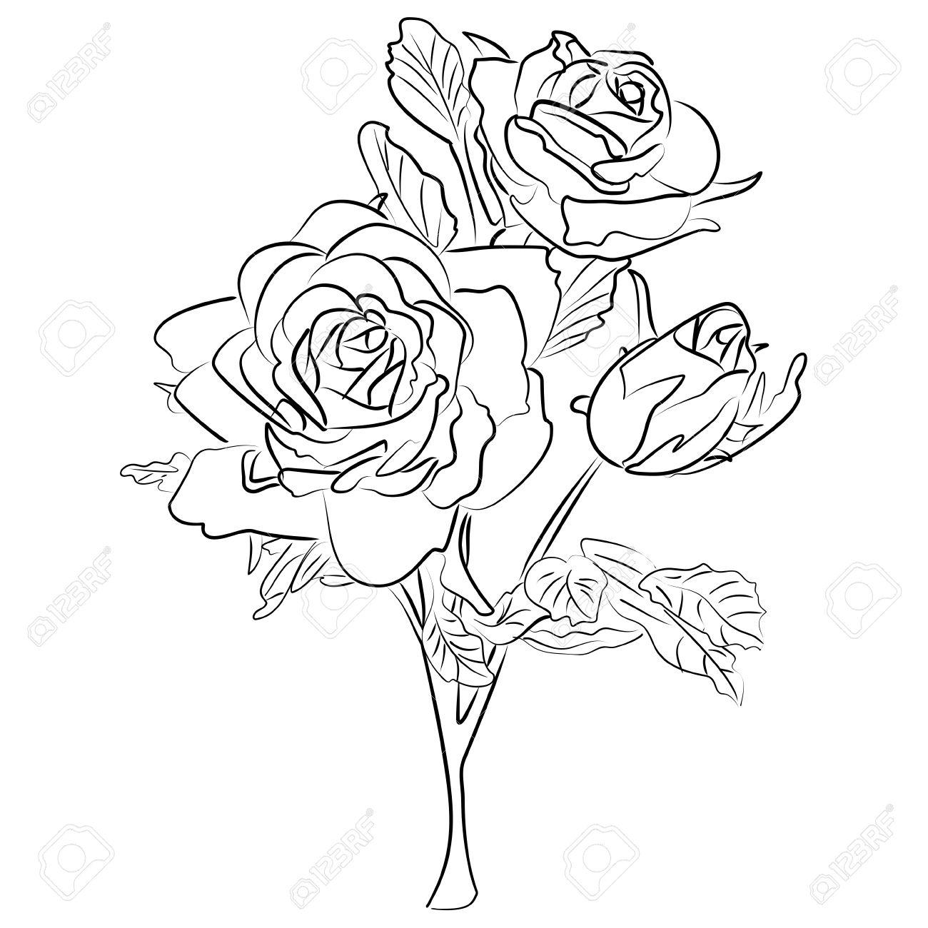 Dessin A L Encre D Une Rose En Noir Et Blanc Clip Art Libres De