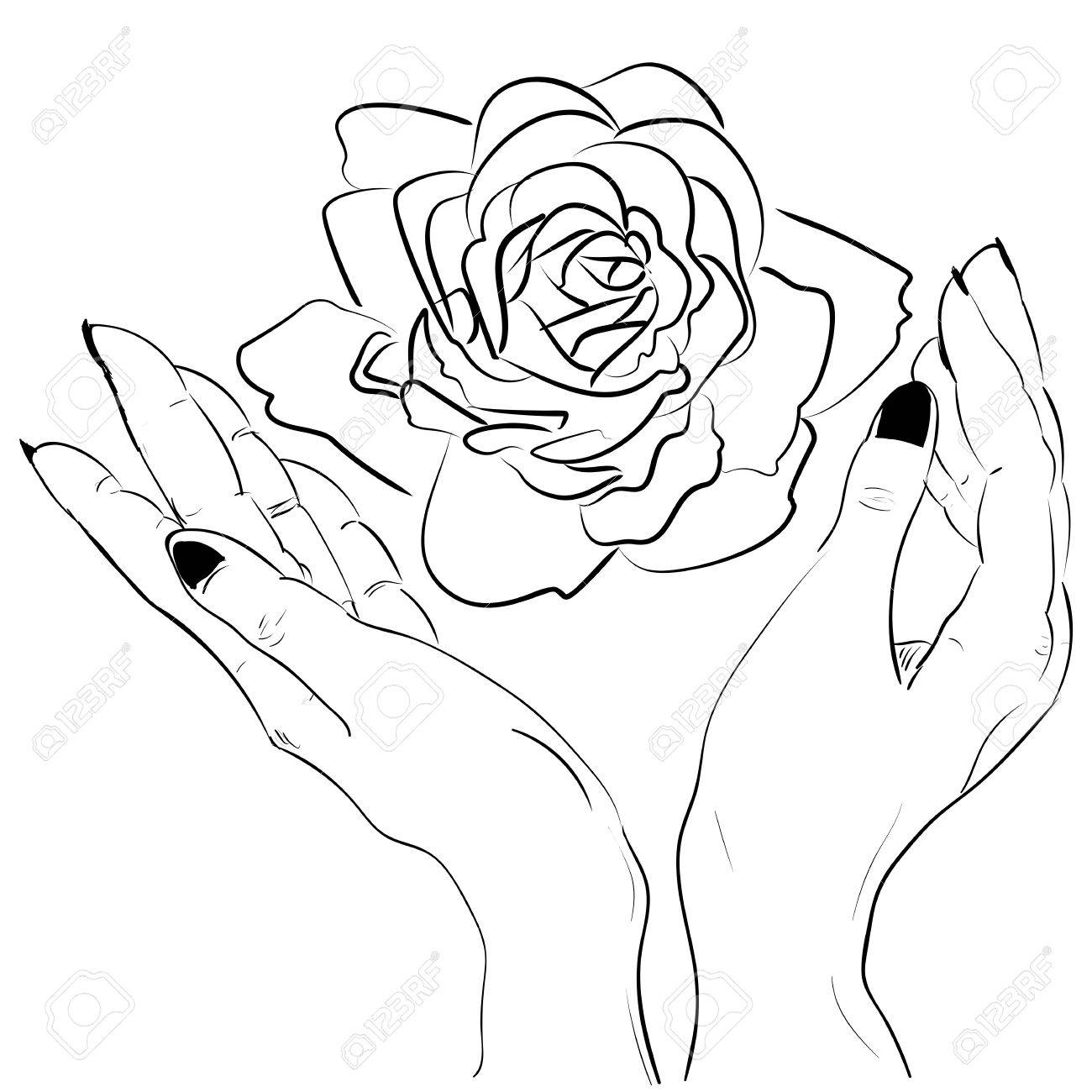 Hands Holding A Rose Flower Isolated Outline Hand Drawn Sketch