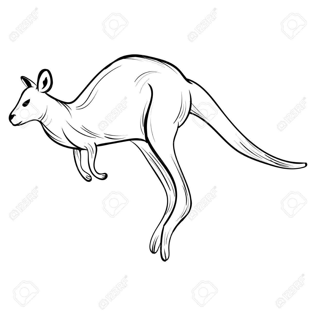 Hand draw kangaroo style sketch tattoo on white background stock vector 84740518