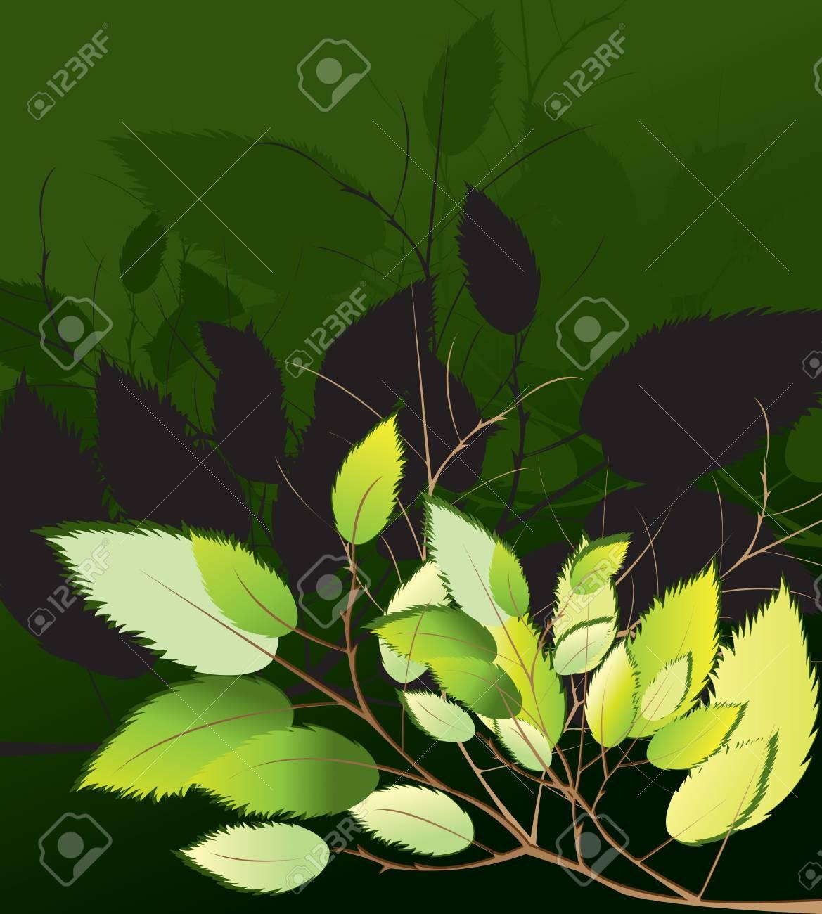 Leaf Vector Illustration Stock Vector - 12473203