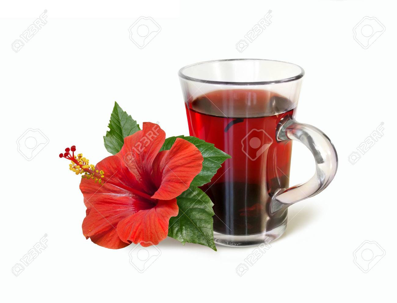 Red Hibiscus Tea Drink And Bright Large Flower Isolated On White