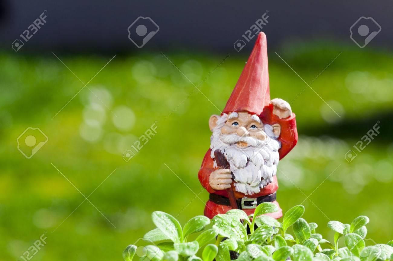 Peu Drole Nain De Jardin Est A L Exterieur Dans Le Jardin D Herbes