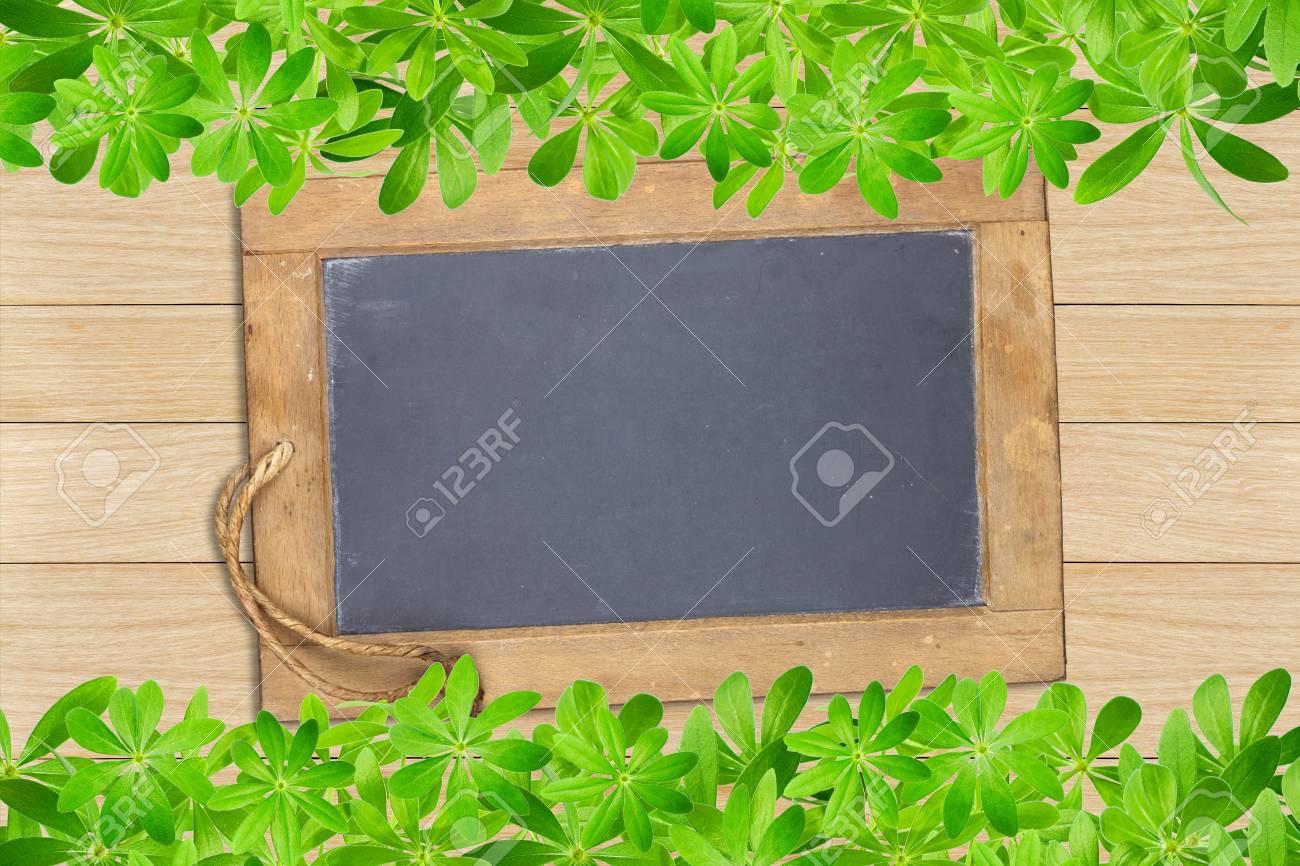 Schieferplatte Eingerahmt Oben Und Unten Mit Woodruff Blätter Auf ...