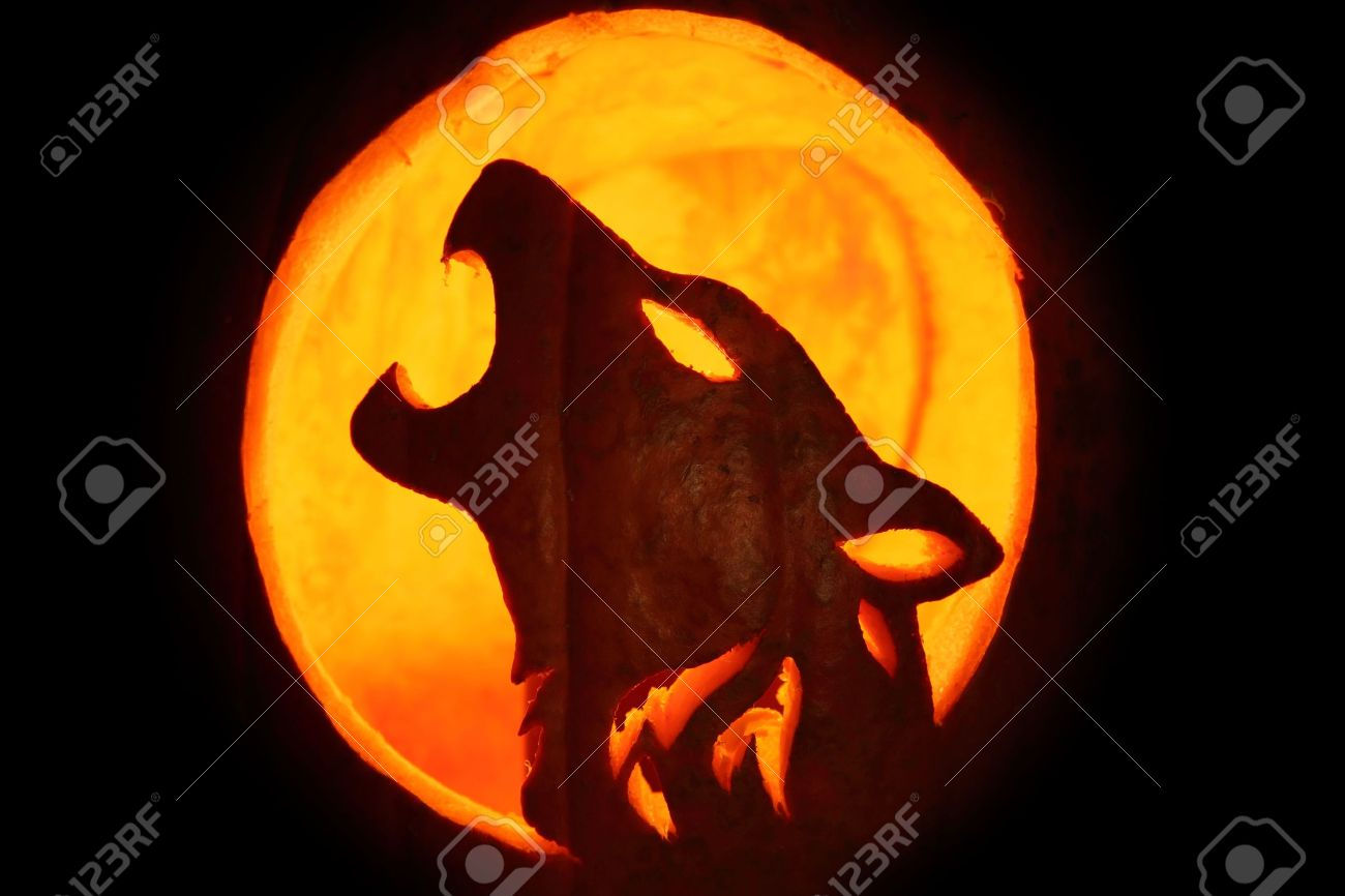 Silhouette of halloween pumpkin carved into howling wolf pattern