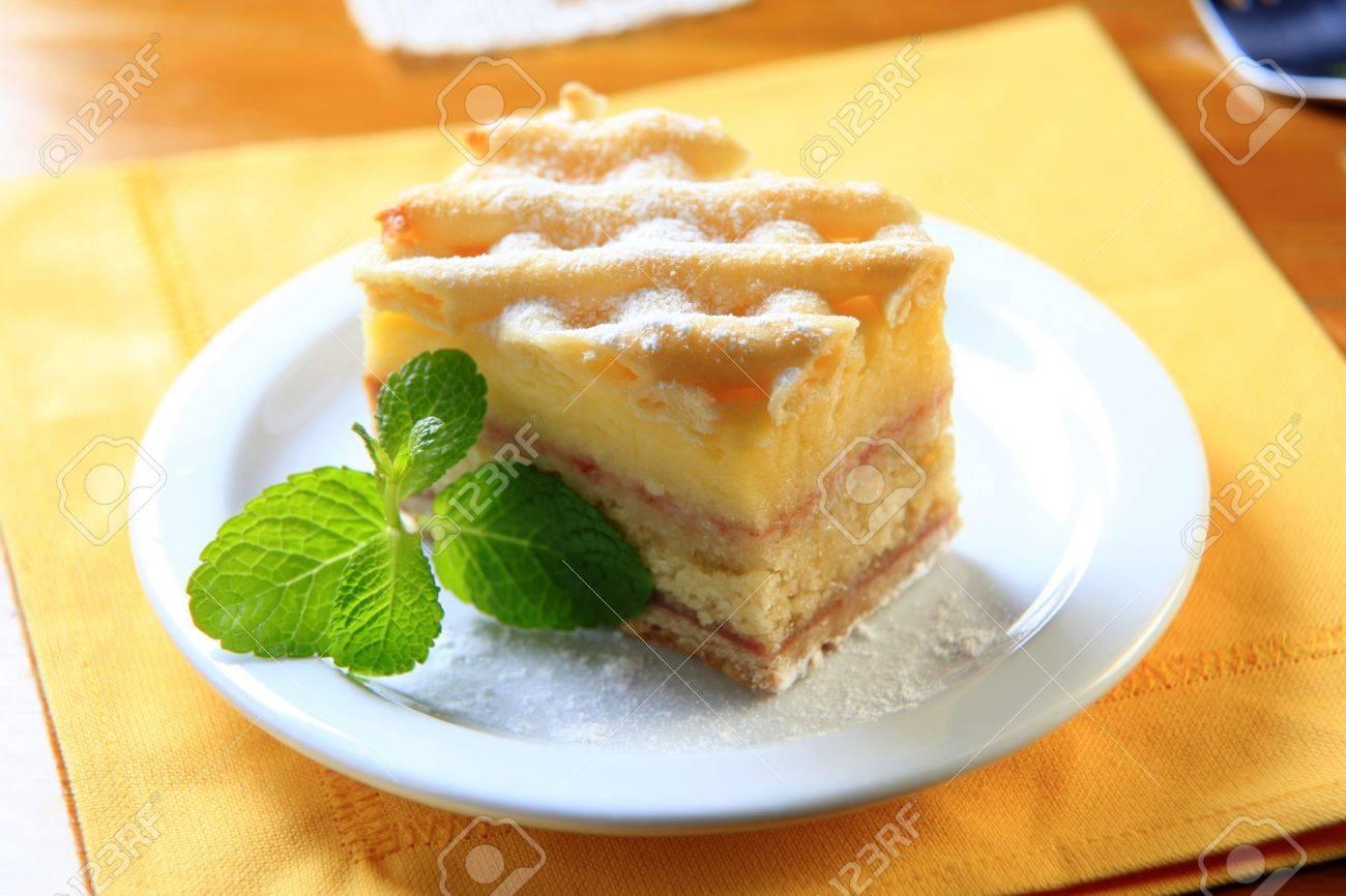 Slice Of Rum Soaked Sponge Cake With Vanilla Custard Stock Photo 15647883