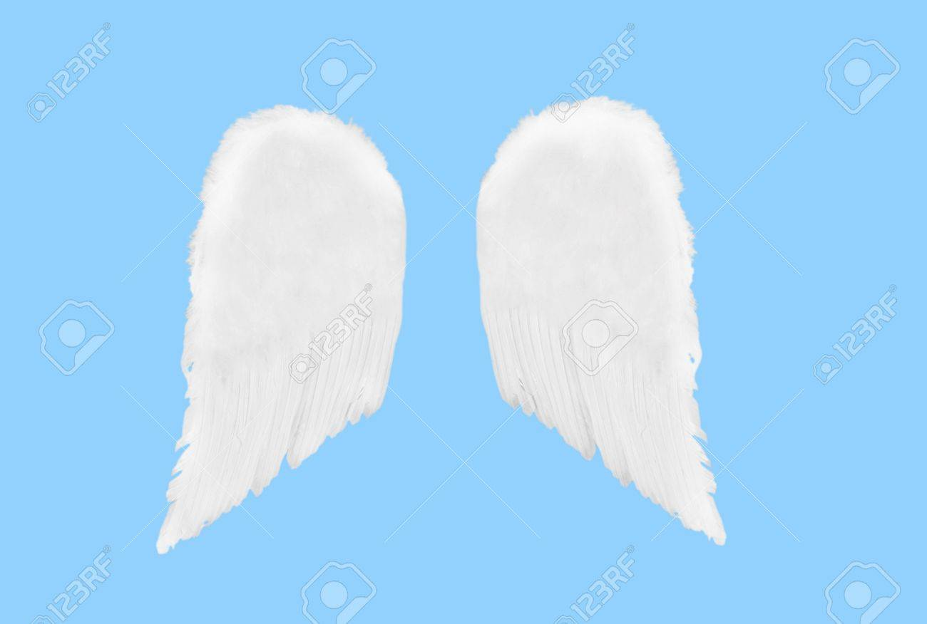 Isolated Separated Angel Wings on Blue Solid Background Stock Photo - 415979
