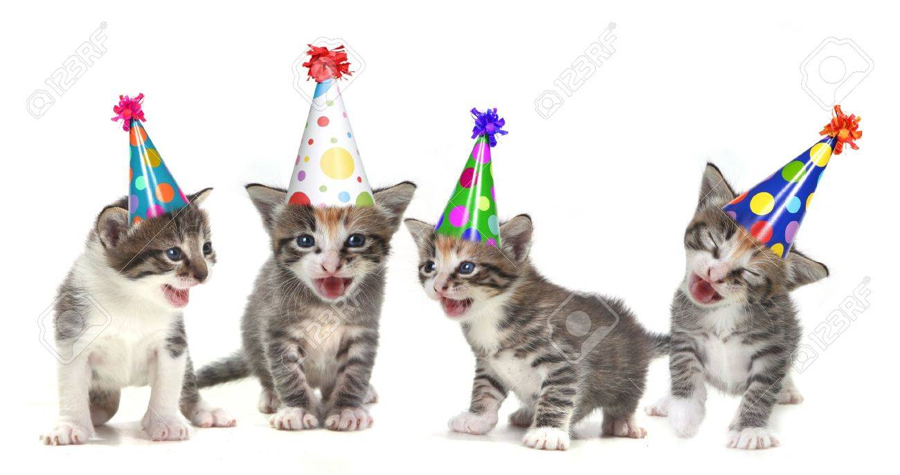 Singing Kittens on a White Background With Birthday Hats Stock Photo - 10629603