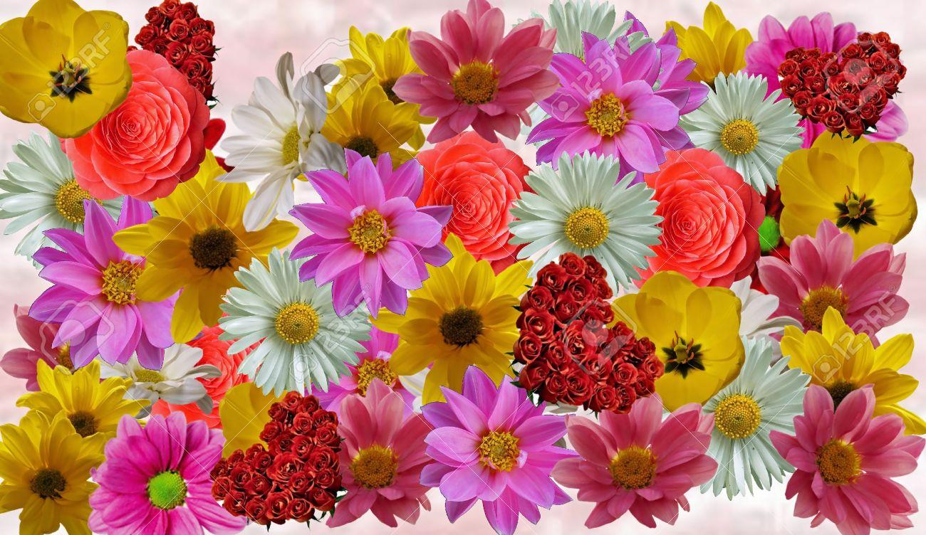 Plantilla De Collage De Flor Para Collages De Fotos Y Artesanías De ...