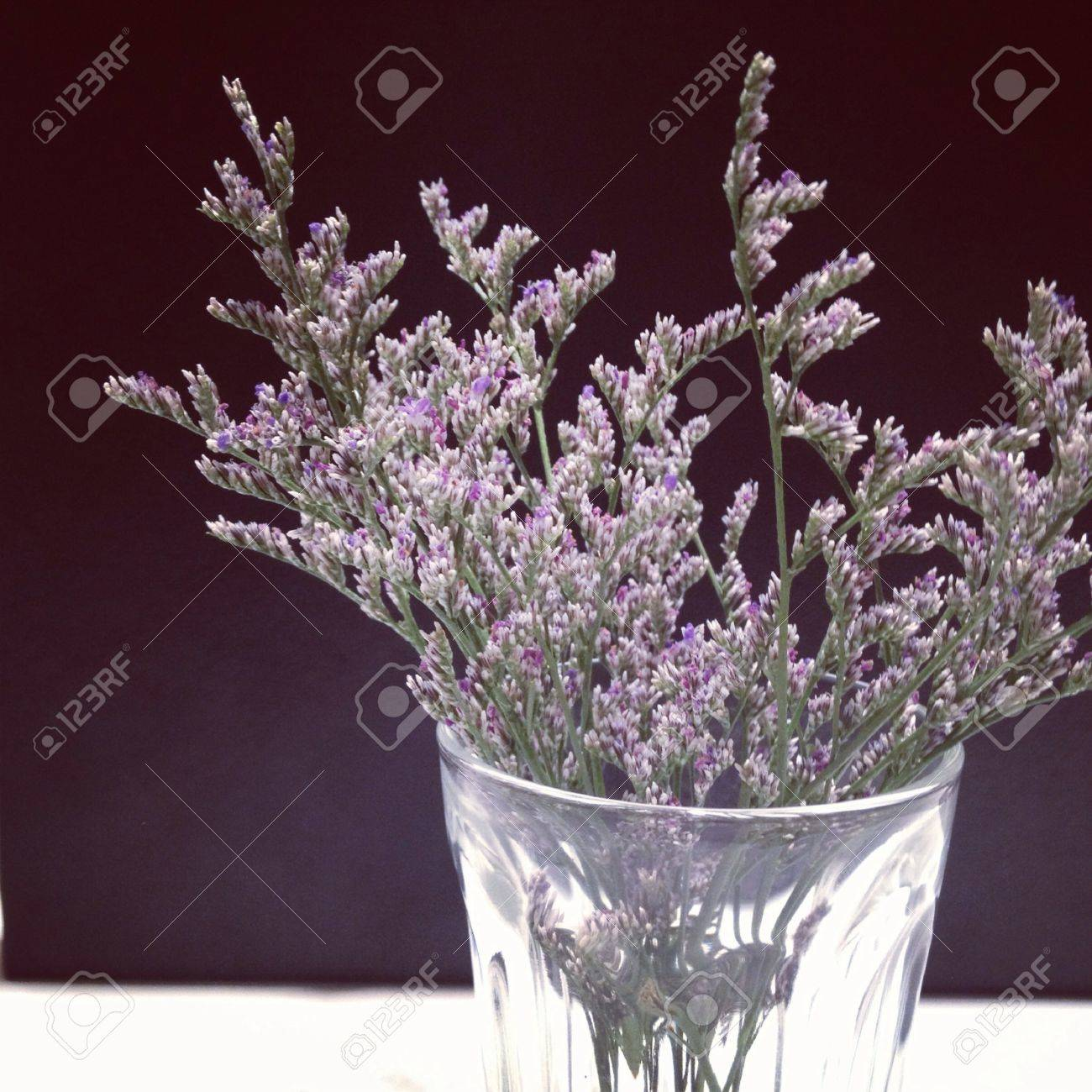 small purple flower in the glass stock photo, picture and royalty, Beautiful flower