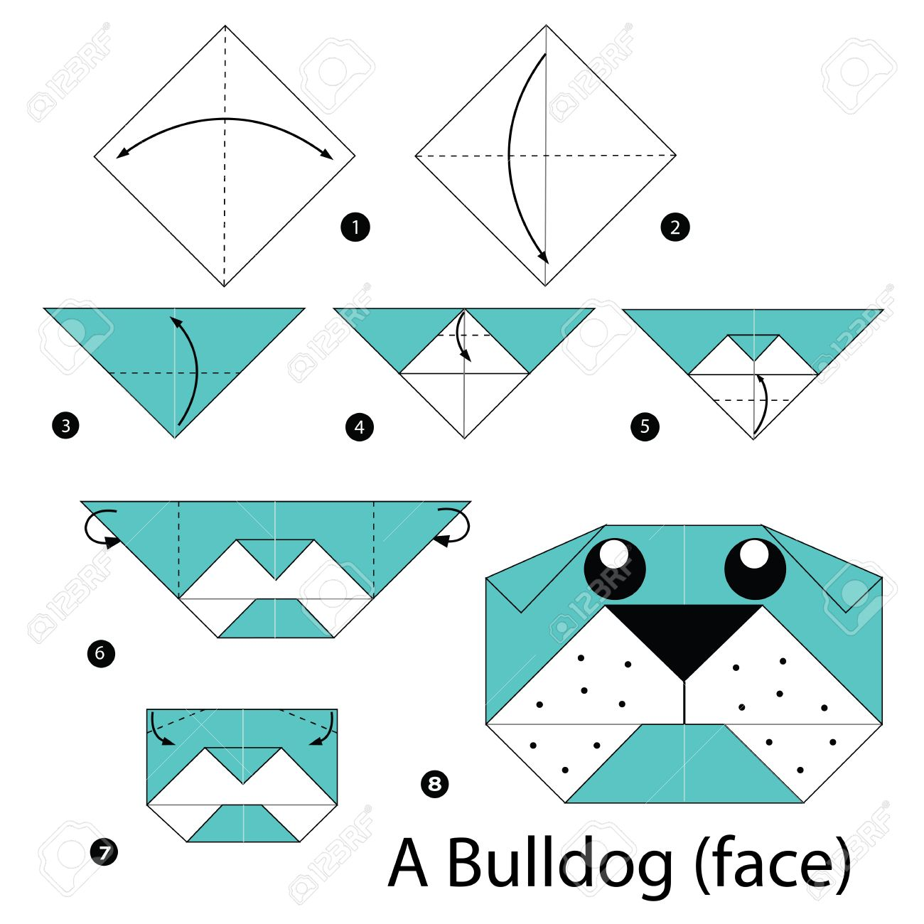 Vector Step By Step Instructions How To Make Origami A Bulldog Step By Step  Instructions How