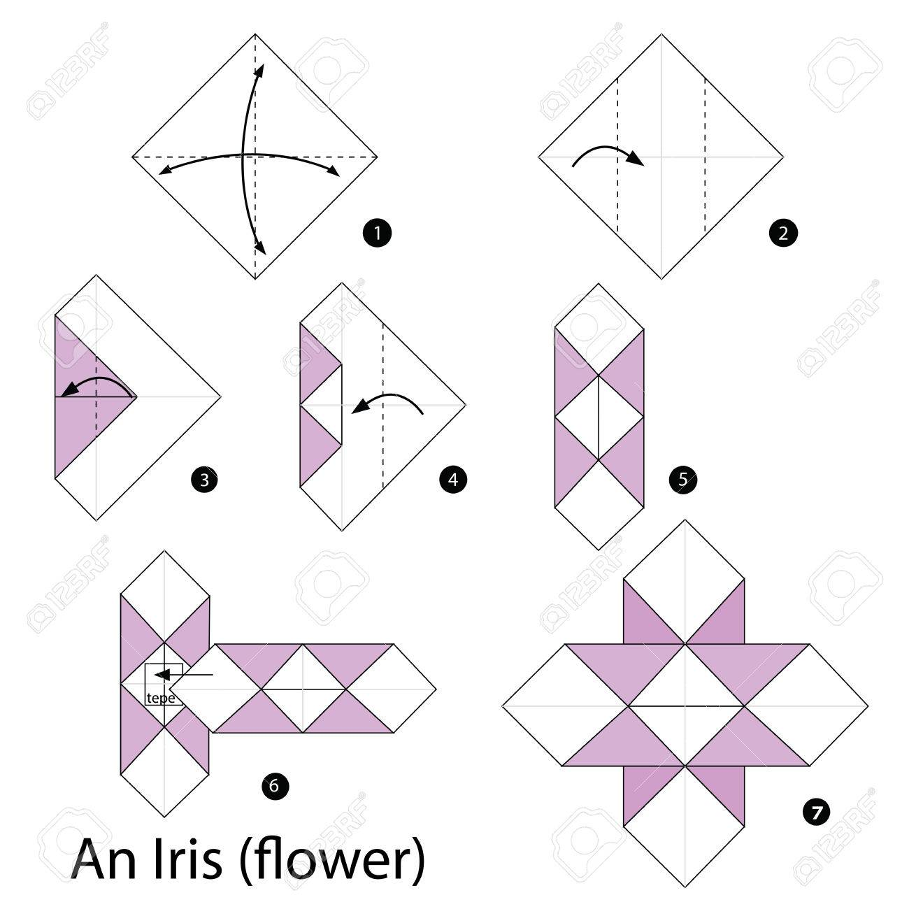 Step by step instructions how to make origami an iris flower step by step instructions how to make origami an iris flower stock vector mightylinksfo