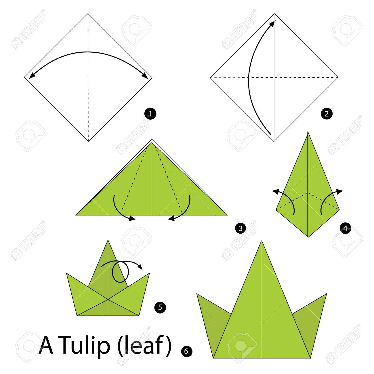 Step by step instructions how to make origami A Tulip (leaf )