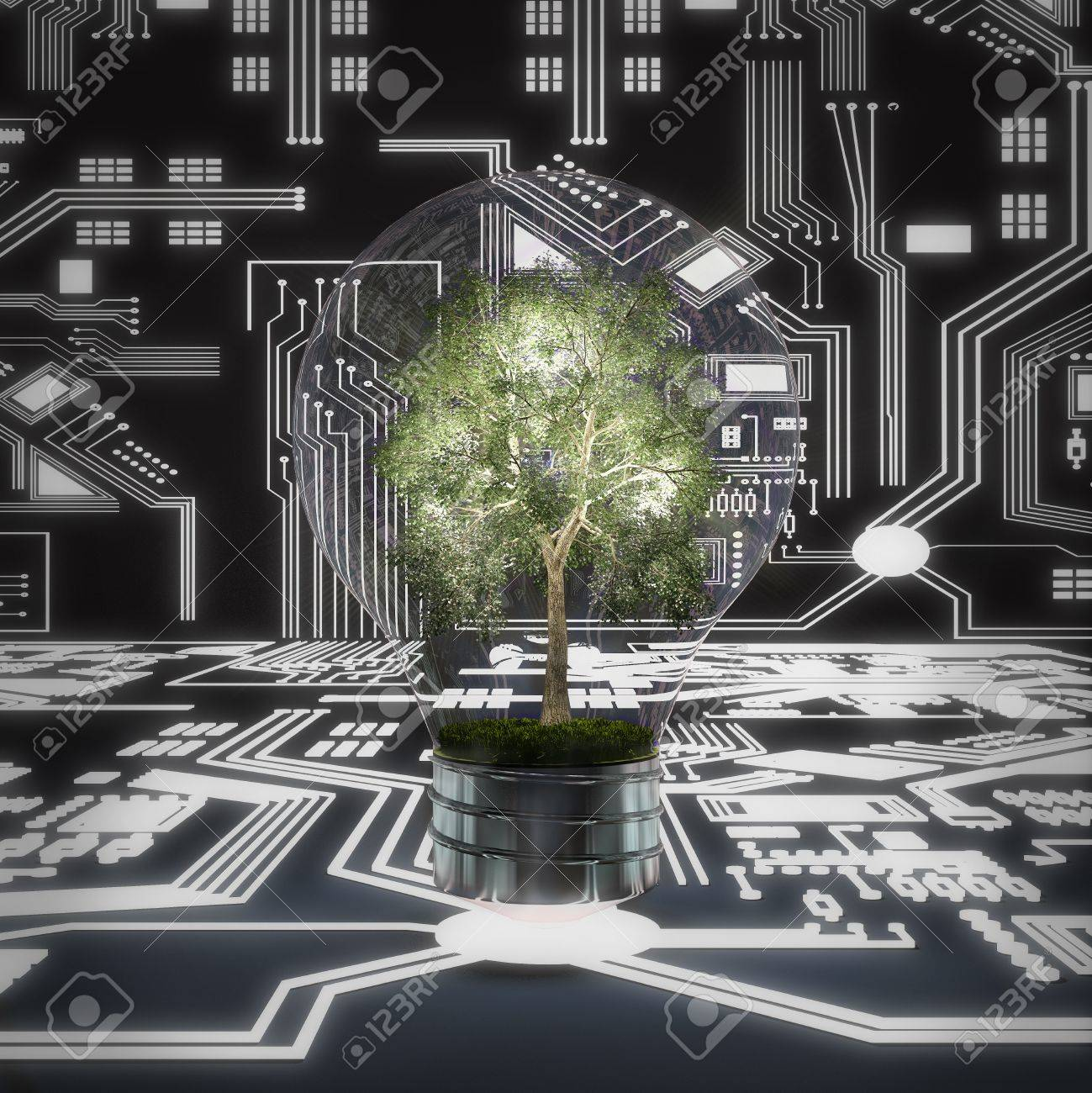 tree in lamp with cercit board Stock Photo - 17404838