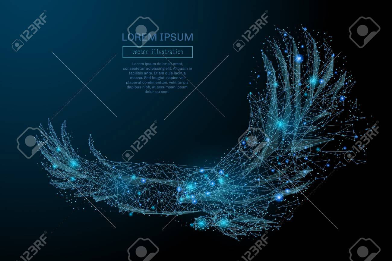 Eagle in flight from abstract polygonal points blue. Low poly eagle in motion, lines and connected to form, vector illustration. - 69471267