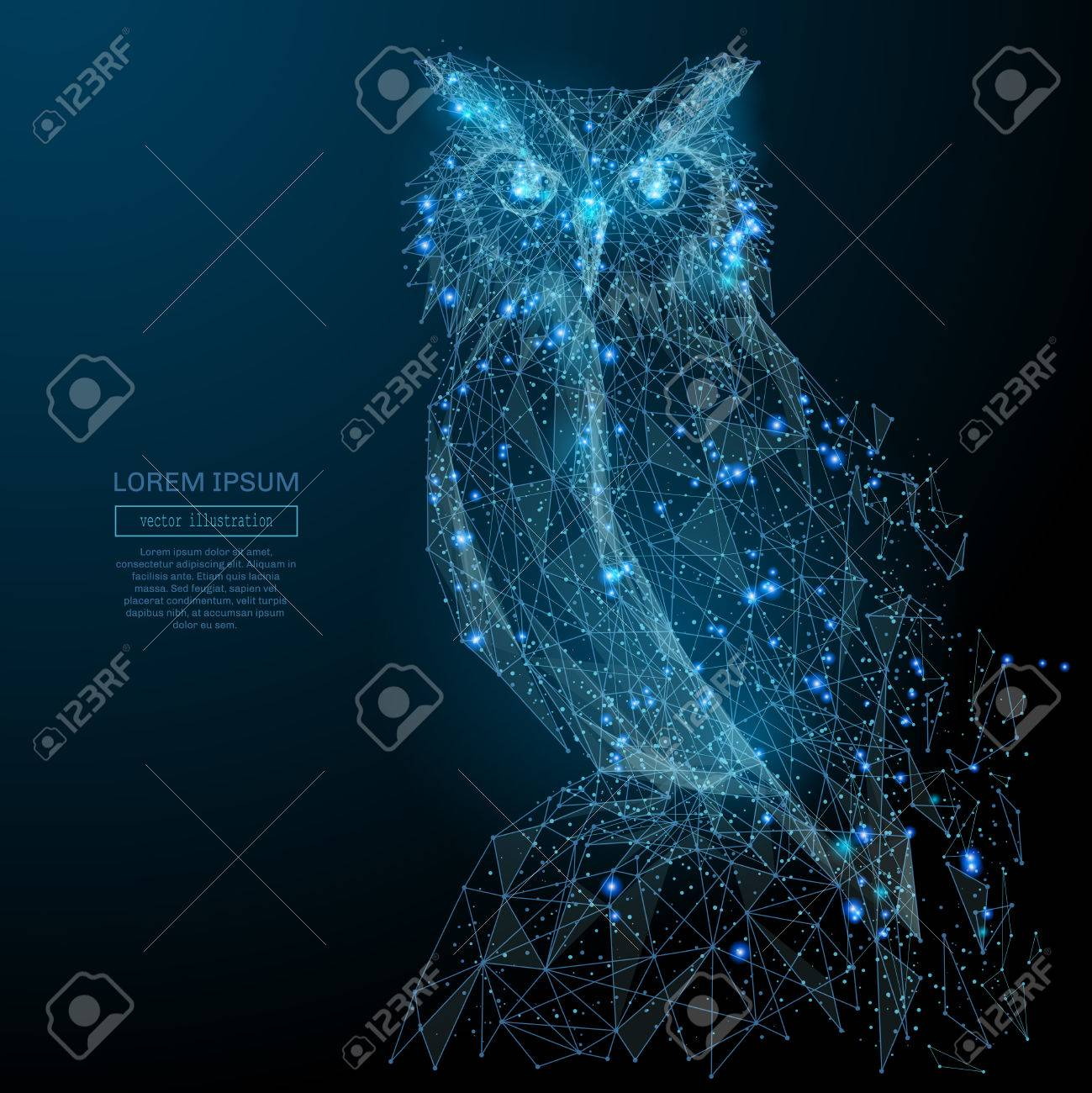 Owl isolated from low poly wireframe on dark background. Wild bird of prey. Vector polygonal image in the form of a starry sky or space, consisting of points, lines, and shapes in the form of stars - 85127826