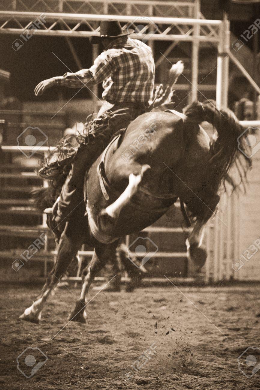 Rodeo Stock Photo - 10522953