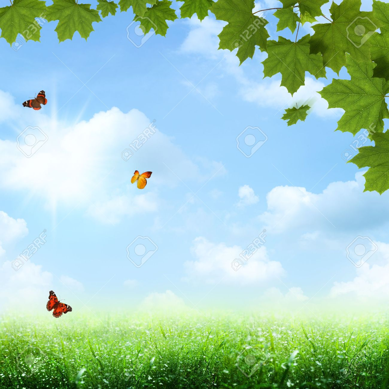 Under The Blue Skies Abstract Spring And Summer Backgrounds Stock