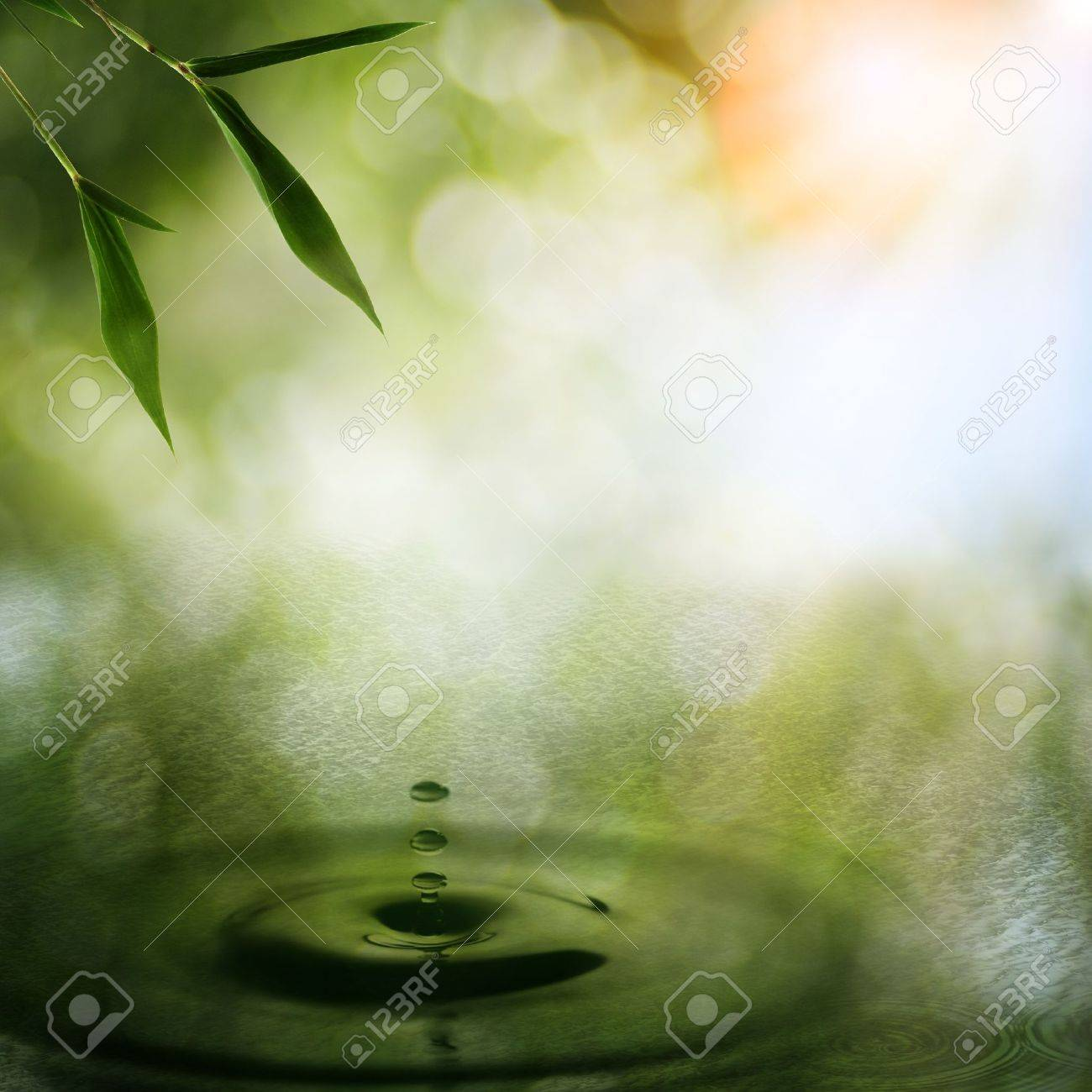 Abstract oriental backgrounds with bamboo foliage Stock Photo - 15071170
