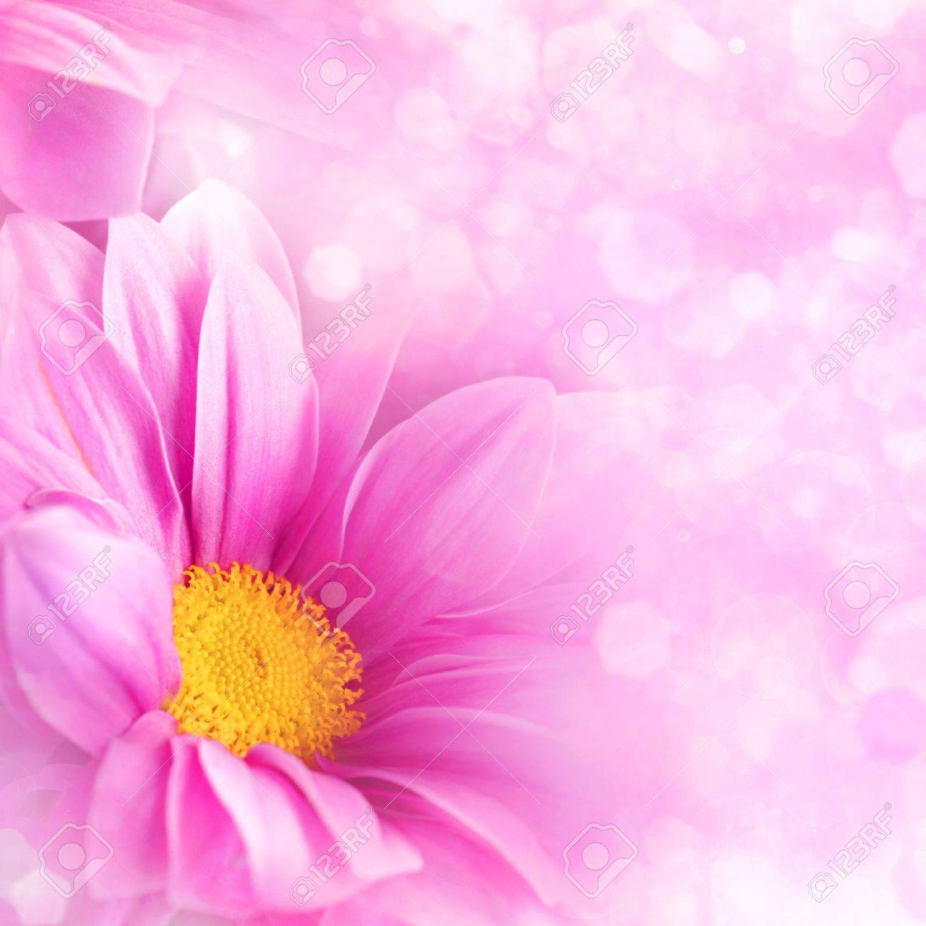 Abstract Floral Backgrounds For Your Design Stock Photo Picture