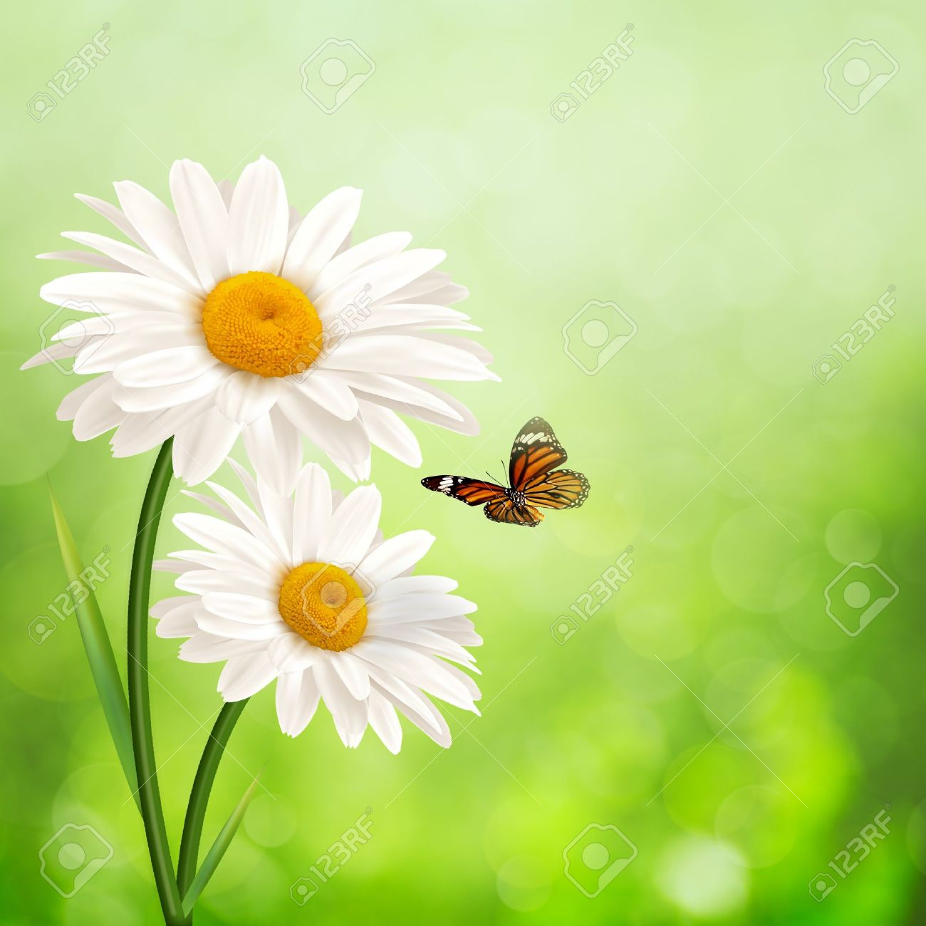 Happy meadow. Abstract summer backgrounds with daisy flowers - 18702159