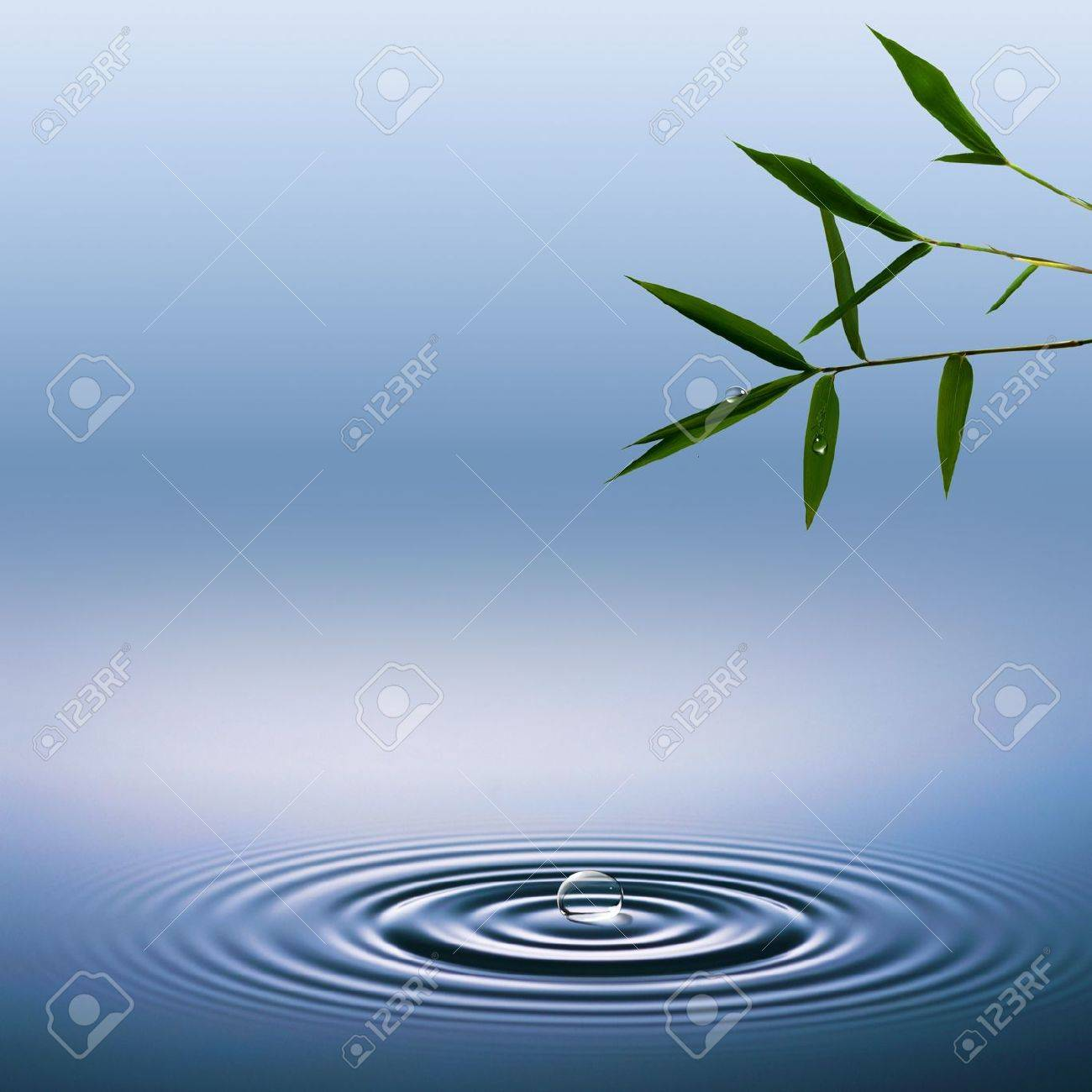 abstract environmental backgrounds with bamboo and water droplets stock photo 19137826