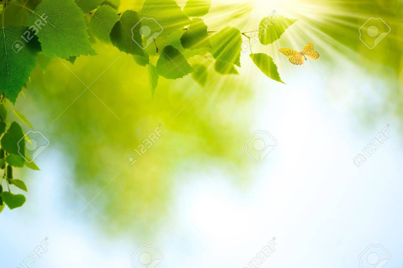 Beauty Summer Day Abstract environmental backgrounds for your design - 20214499