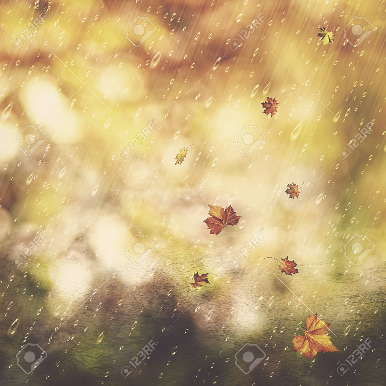 autumn rain abstract seasonal backgrounds with fall and water