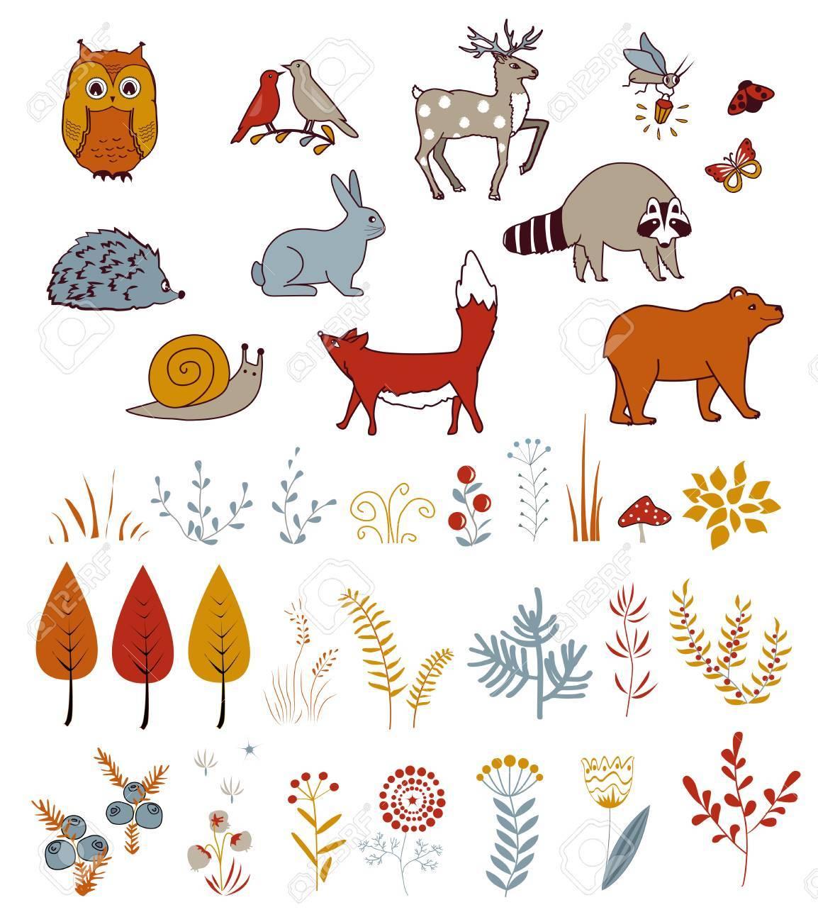 Vector Lindo Con Doodle Bosque Plantas Y Animales. Aves, Oso, Ciervo ...