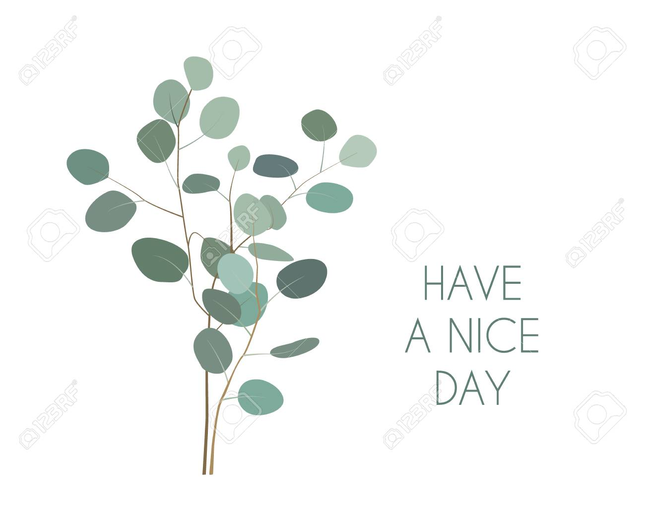 Have a nice Day greeting card with silver dollar Eucalyptus plant branches. Hand painted eucalyptus elements isolated on white background - 96719273