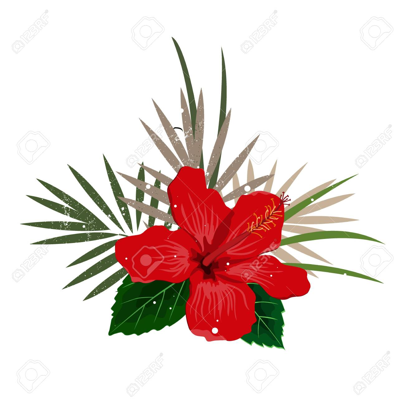Bouquet composition with red hibiscus flower and palm leaves, flat vector illustration. Tropical exotic Hawaii plants isolated on white - 154960407