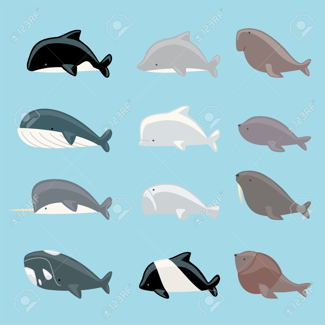 marine mammals icon collection with whale dolphin manatee