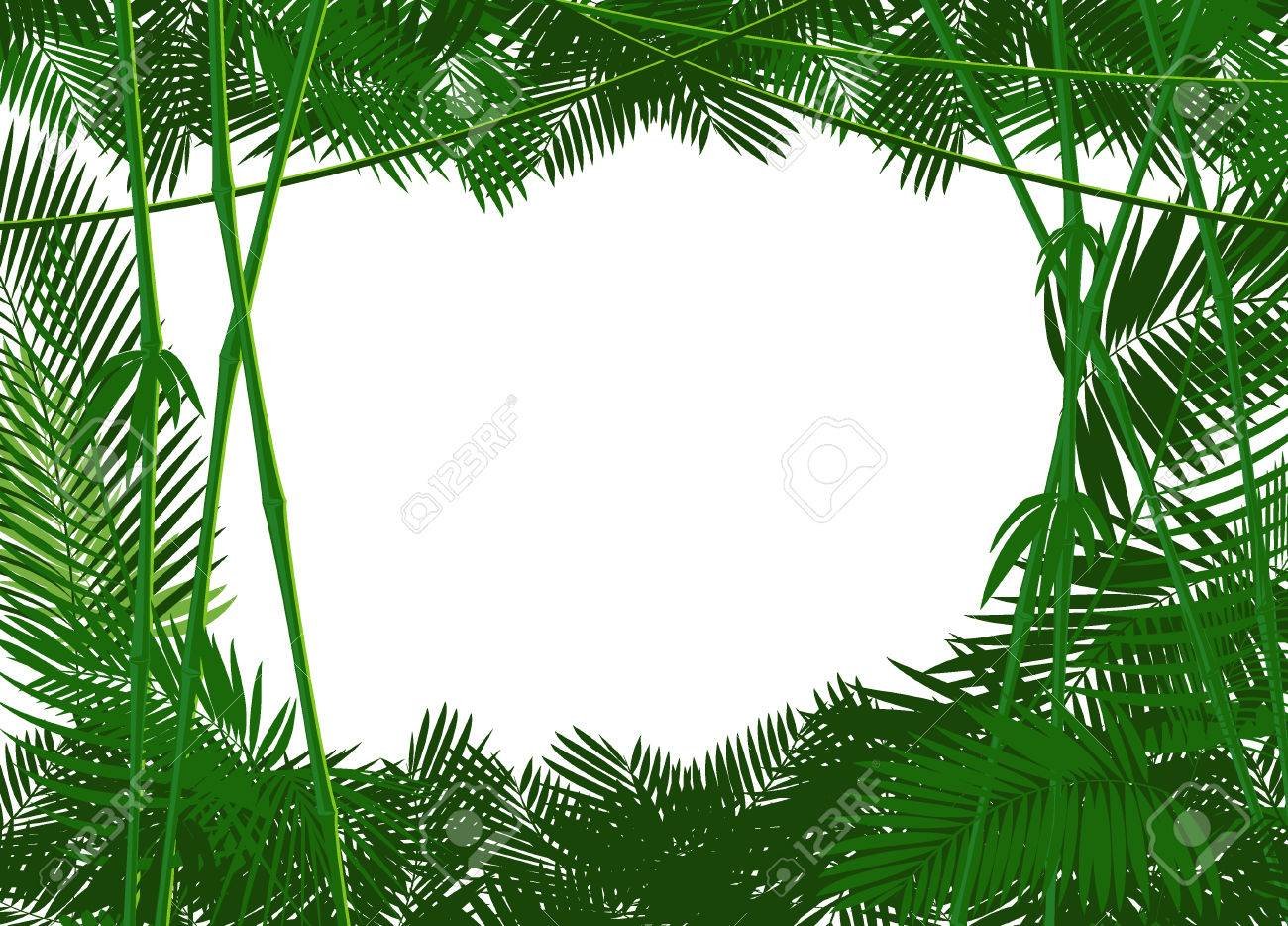 jungle forest backgound for you text or simple image. vector illustration - 51569596