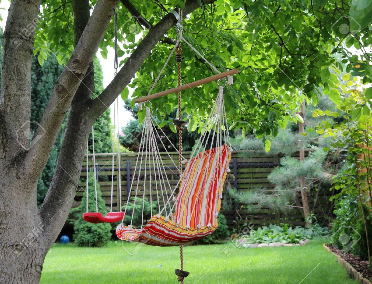Color hammock and red swing hanging on the tree Stock Photo - 7610946 -  Color Hammock - Tree Hammock Swing Design Your Life