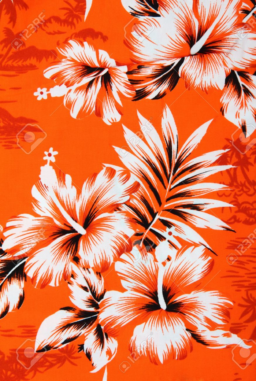 Hawaii Pattern Seamless Vector Image By C