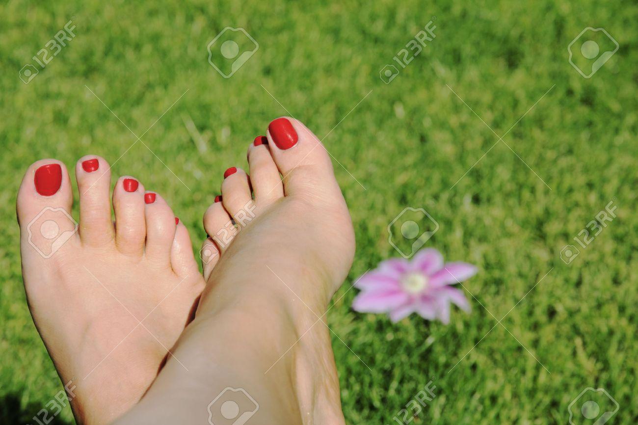 Mujer Pies Con Las Uñas Rojas En Fondo De La Hierba Con Flor Fotos ...