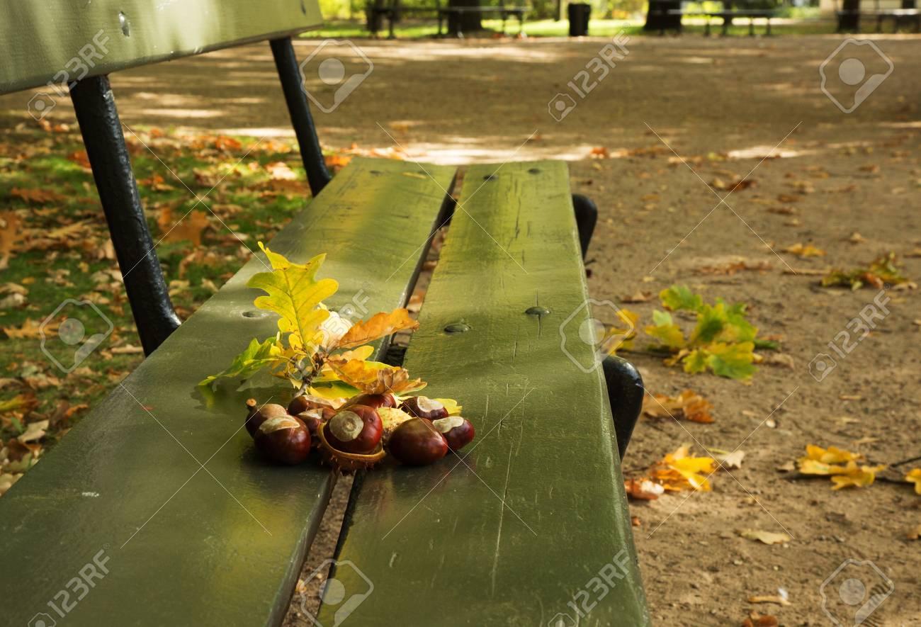 Polandwarsawlazienki Royal Park In Autumnautumn In The Park