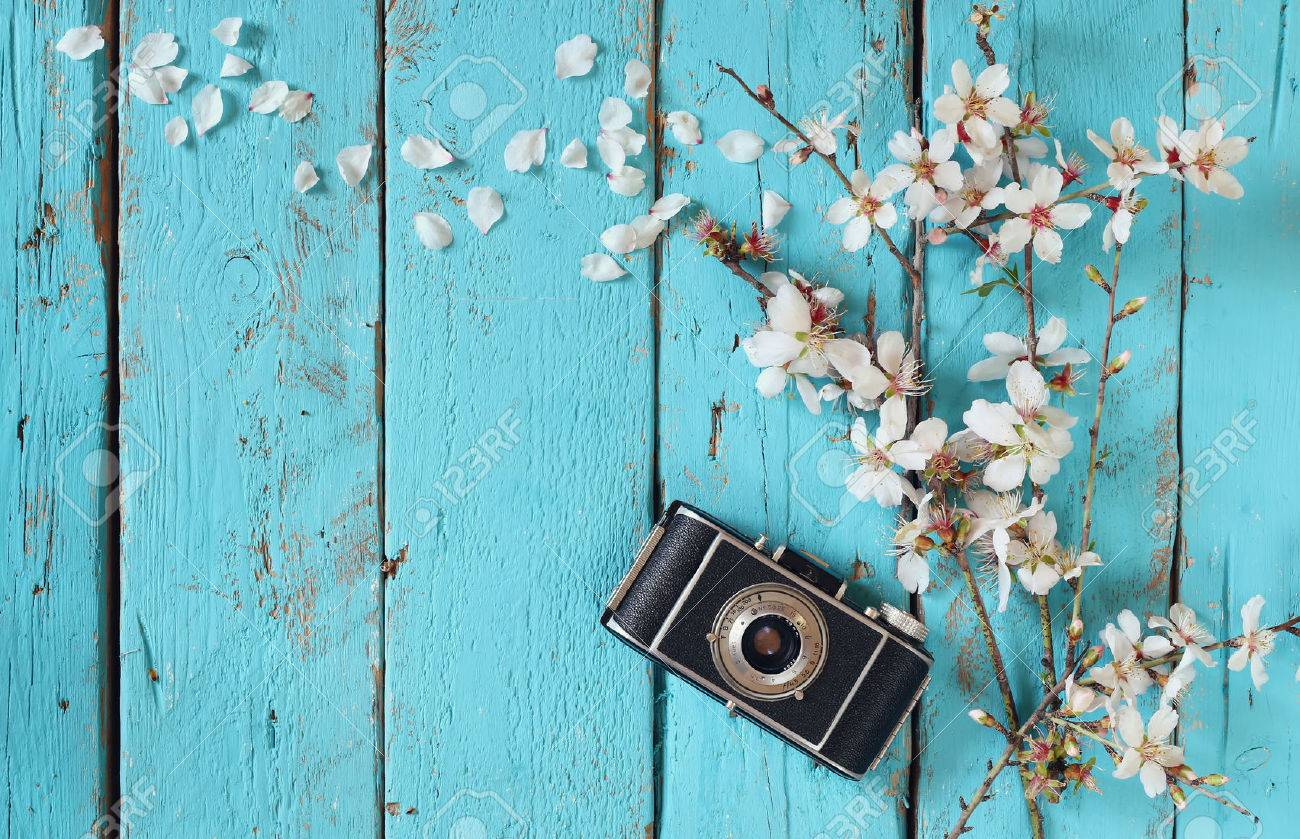 top view image of spring white cherry blossoms tree next to old camera on blue wooden table Stock Photo - 53609592