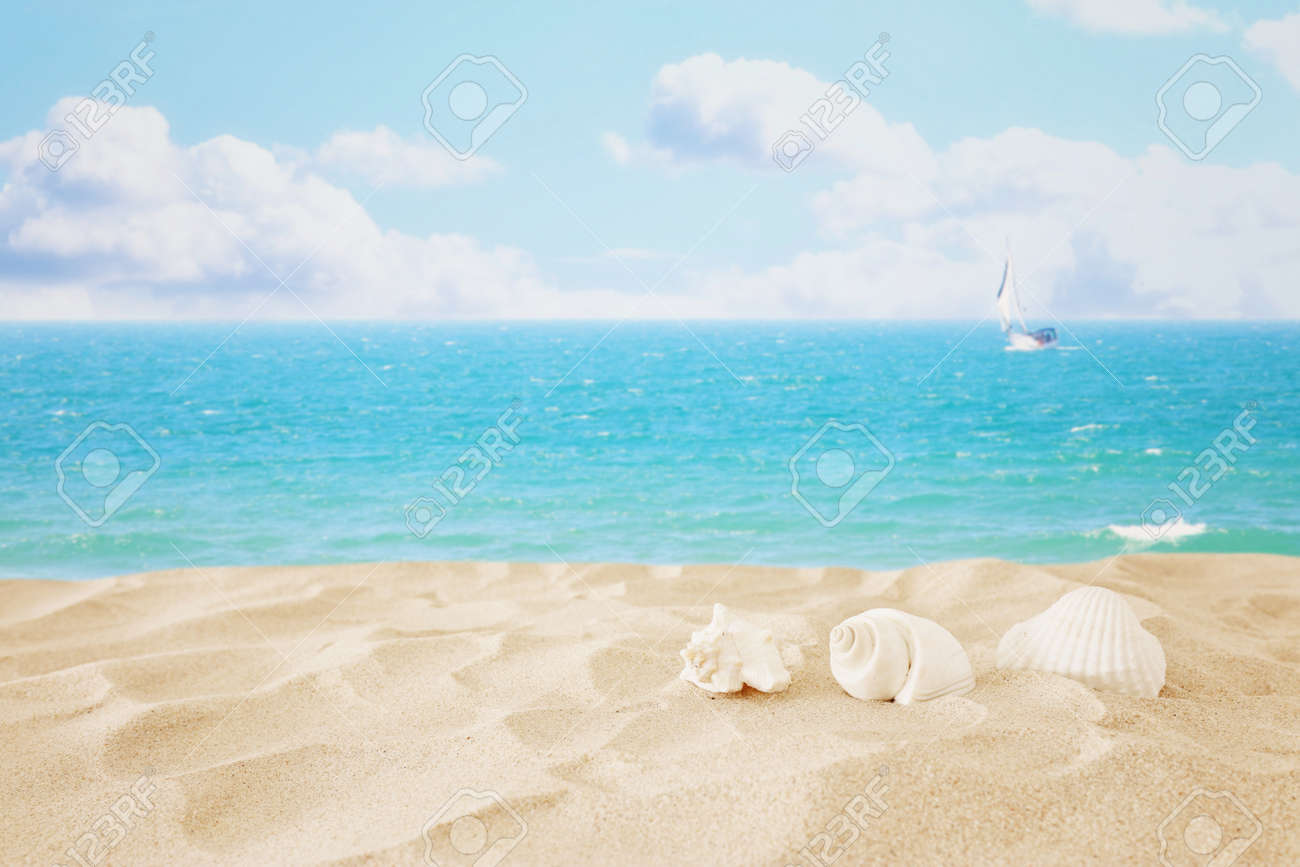 Empty sand beach and shells in front of summer sea background with copy space - 126912076