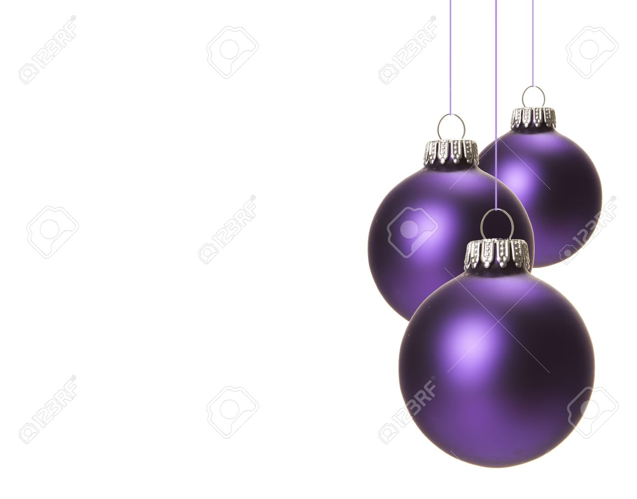 Christmas Purple.Christmas Purple Christmas Balls Isolated Hanging With White