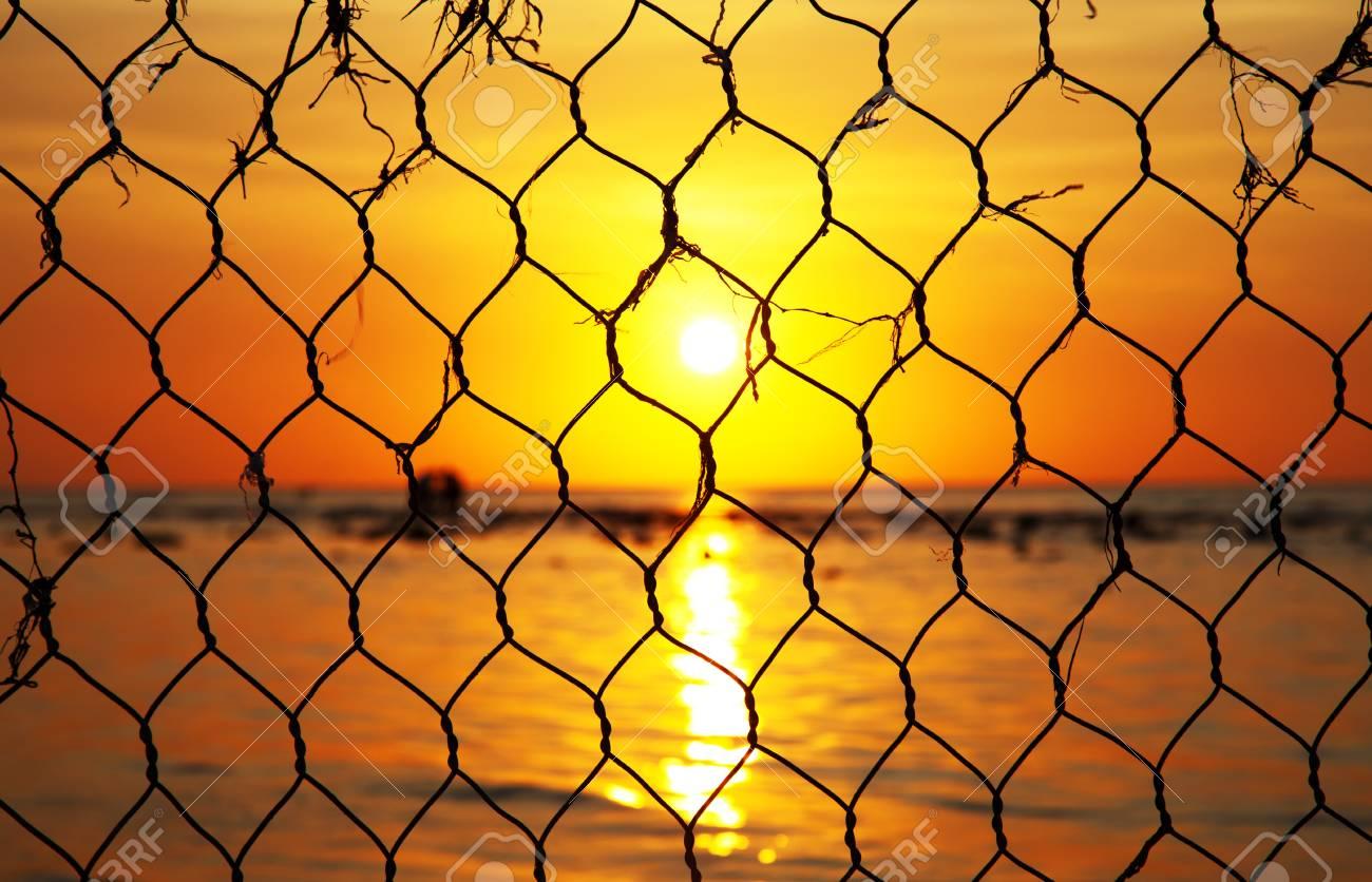 Beautiful sunset trough captivity Stock Photo - 11385018