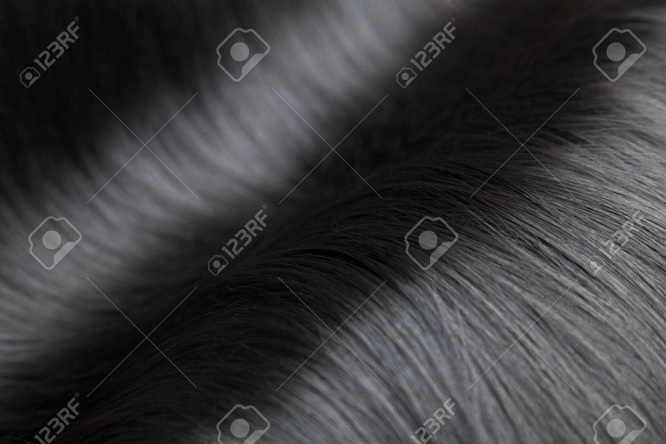 Closeup on luxurious straight and glossy black hair - 40046641