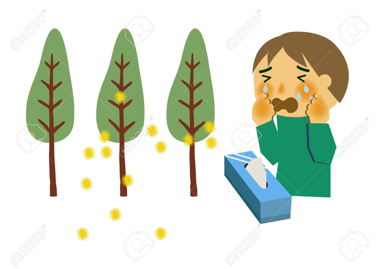 image of hay fever people who sneeze cryptomeria pollen allergy rh 123rf com happy clip art images hat clip art outline