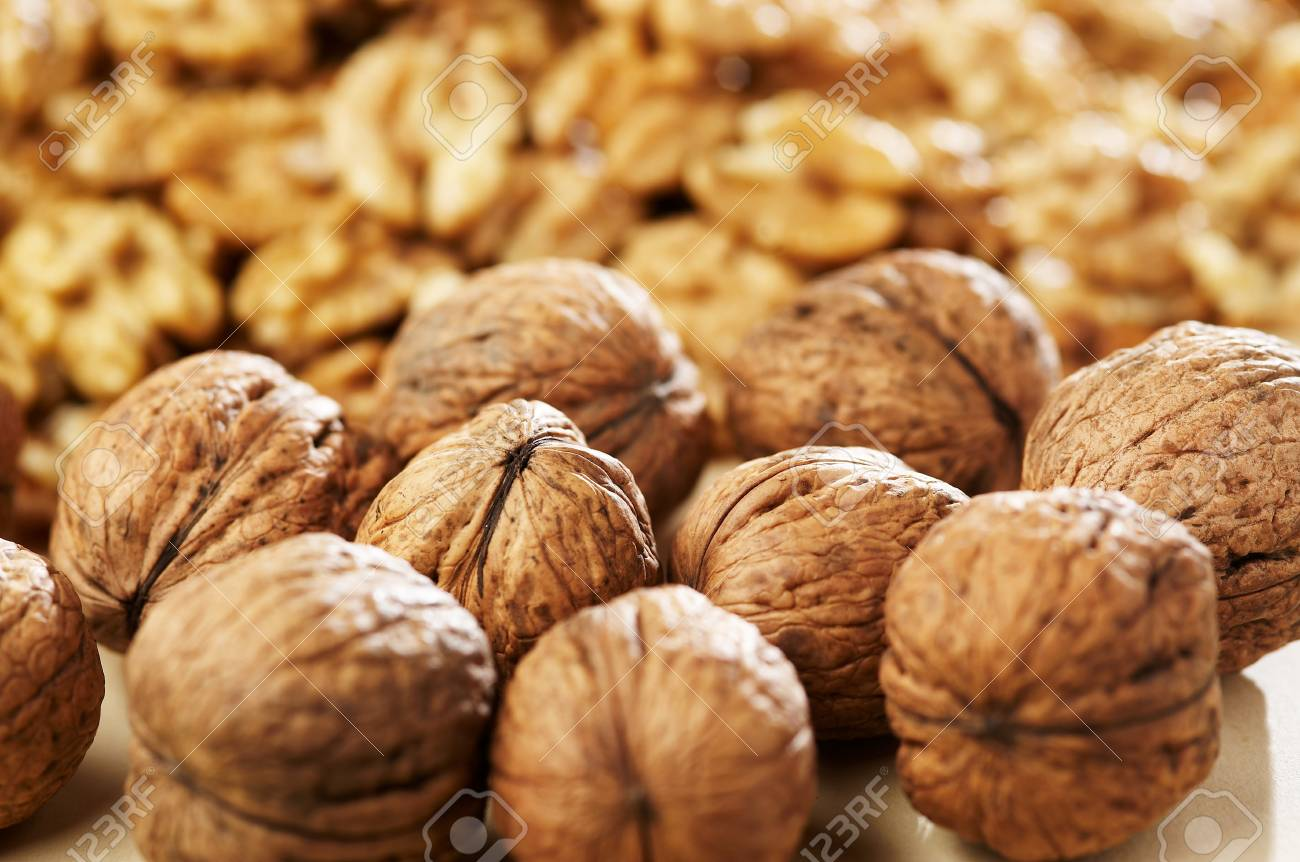 Group of walnut Stock Photo - 4065103