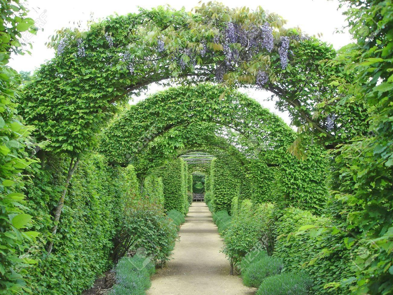 Jardin Camino Bajo Arcos De Flores Prieure Notre Dame D Orsan - Arcos-de-jardin