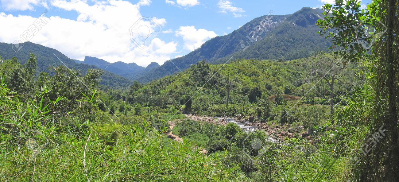 River in a tropical jungle with high mounts - Andapa - Marojejy park - Madagascar - Panoramique. Stock Photo - 1677504