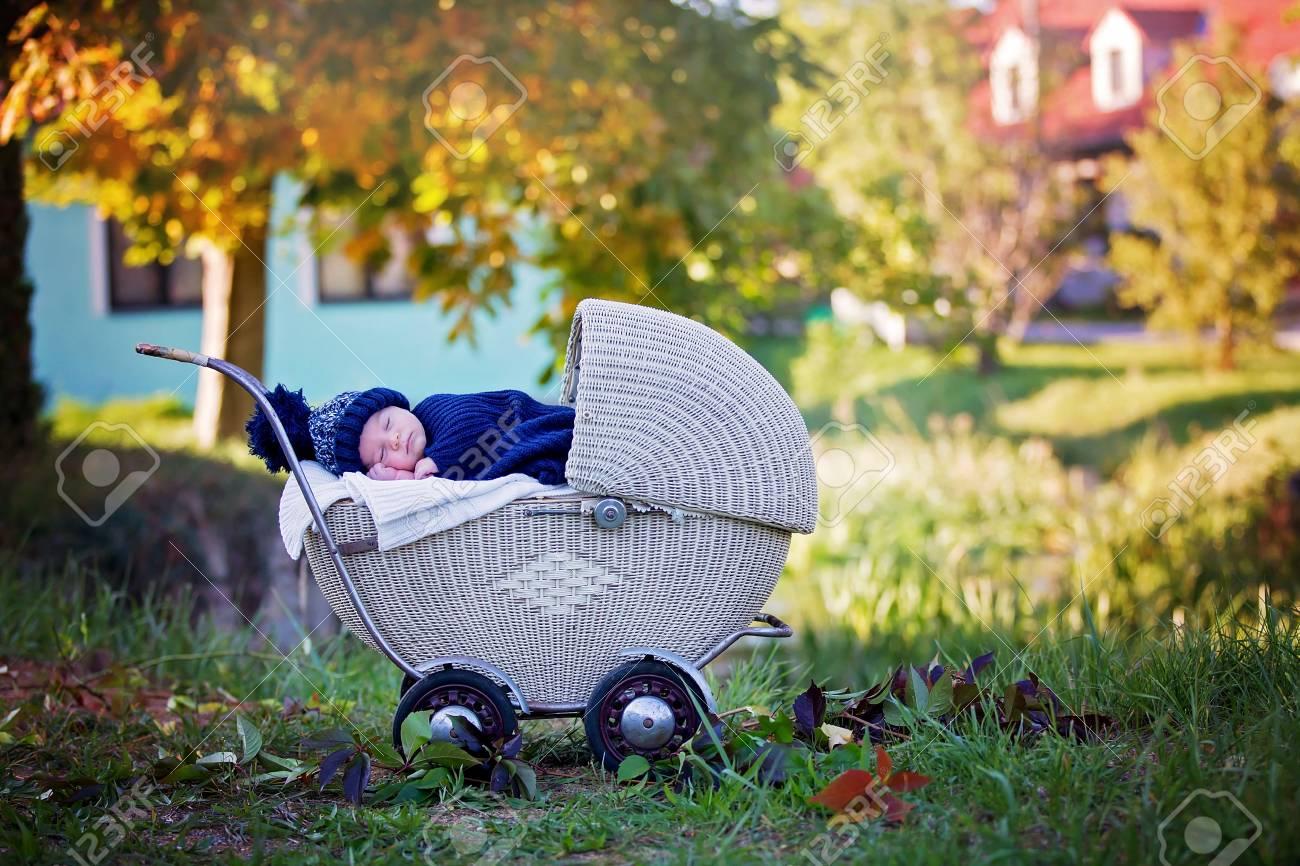 65ba898ef Pequeño Bebé Recién Nacido, Durmiendo En Cochecito Retro Viejo En El  Bosque, Tiempo De Otoño, Envuelto En Bufanda Y Sombrero Hecho Punto.