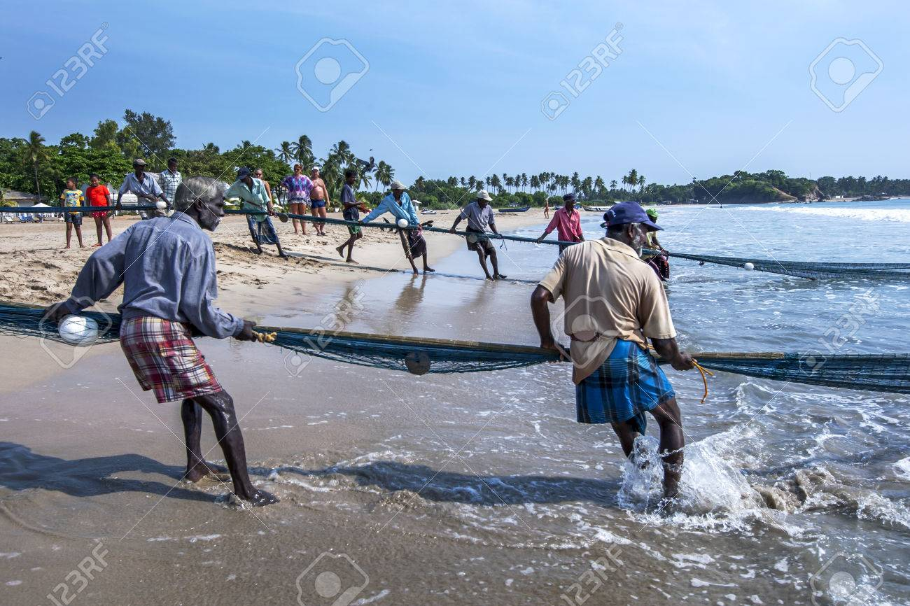 Fishermen hauling in their drag nets from off Uppuveli beach. After hours of hard work they had little to show for all their efforts. East coast of Sri Lanka. - 51991023