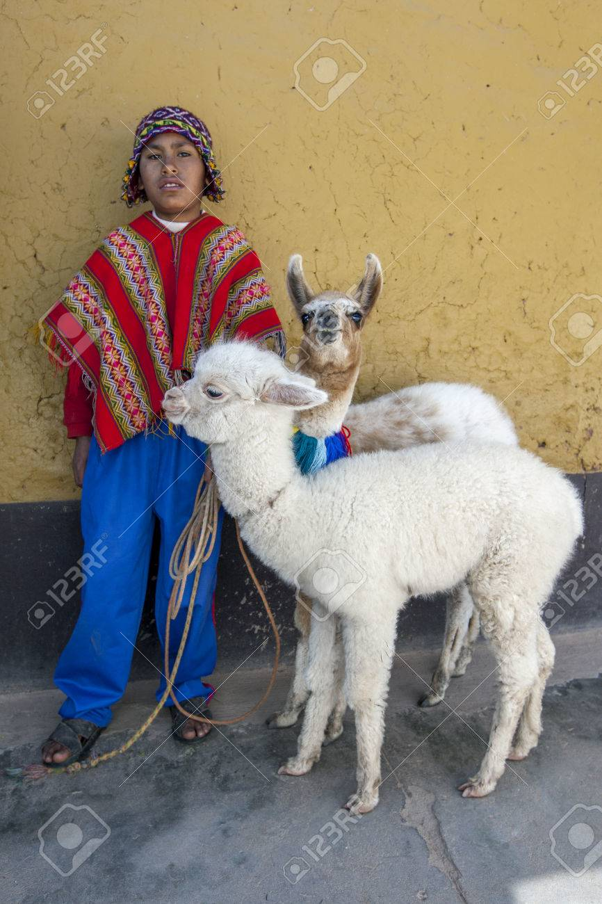 A boy dressed in traditional Peruvian costume with his llamas