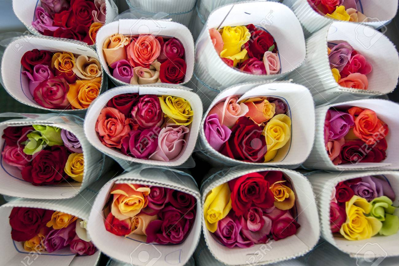 Roses packed ready for export at the Hacienda La Compania Roses Plantation near Cayambe in Ecuador. The major market for these roses is the USA. - 56226036