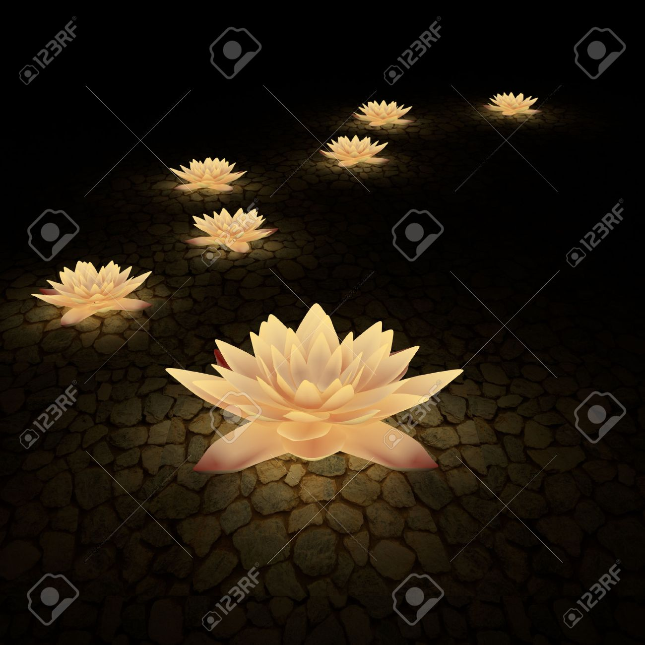 3d Lotus Flower In The Background At Night Stock Photo Picture And